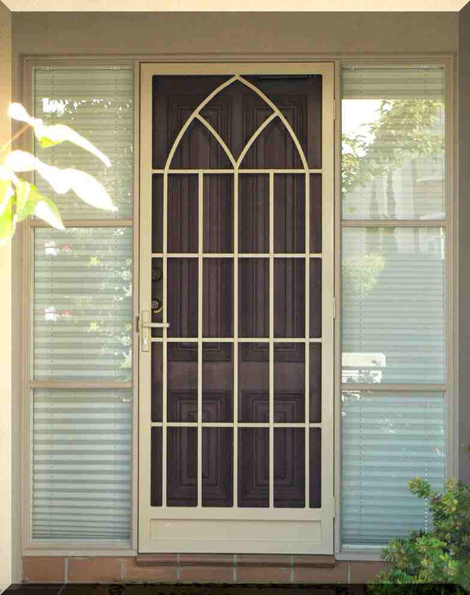 Residential Security Doors : Security doors